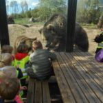 Op uitstap naar de dierentuin !!
